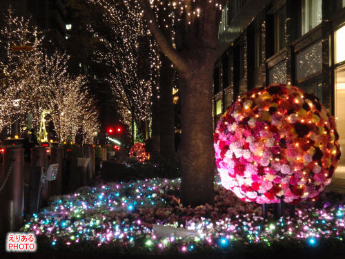 光都東京 LIGHTOPIA 2009 フラワーファンタジア