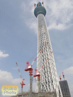 東京スカイツリー448m