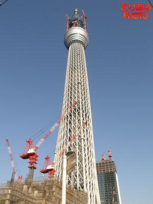 東京スカイツリー539m