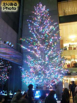 ミキモトジャンボクリスマスツリー2013