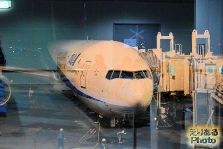 新千歳空港のANA機