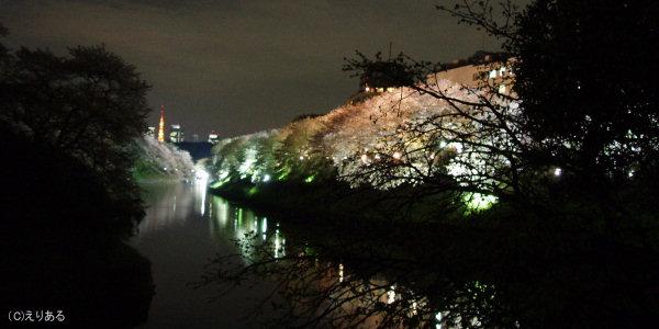 千鳥ヶ淵夜桜2006