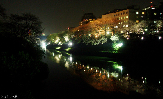 千鳥ヶ淵夜桜2007