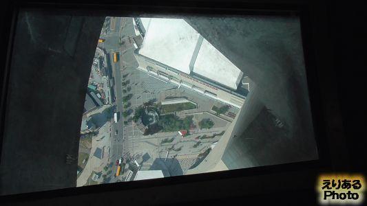 CNタワー Glass Floor(グラスフロア)