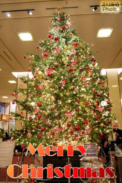 ☆Merry Christmas 2017☆ ~帝国ホテルのクリスマスツリー~